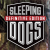 Sleeping Dogs: Definitive Edition Icon