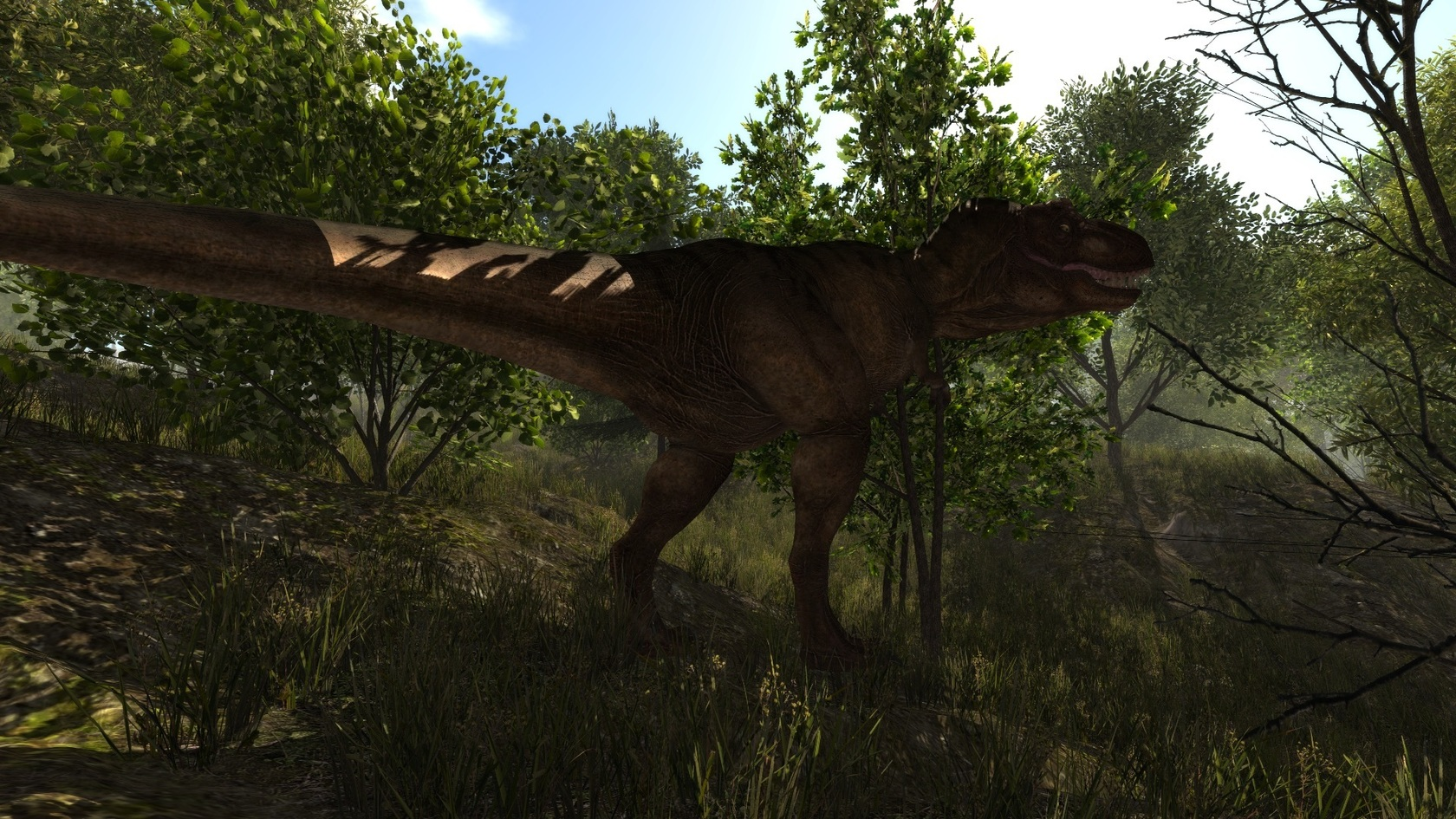 Dinosaur forest download for mac os
