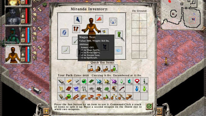 Avernum 6 Screenshot 2