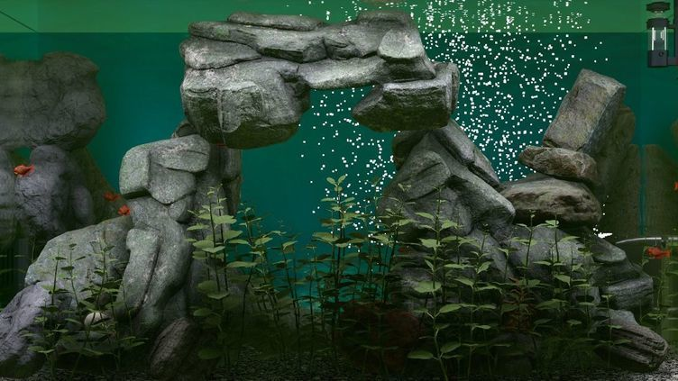 Biotope Aquarium Simulator Screenshot 2
