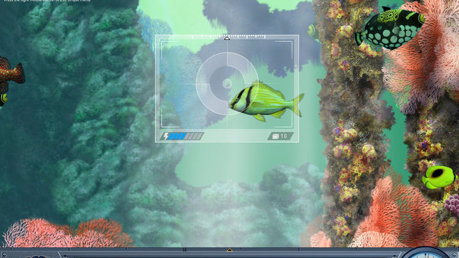 Caribbean Sea Fishes Screenshot 2