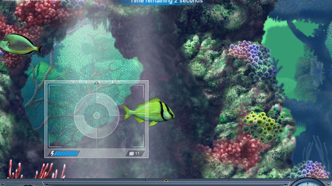 Caribbean Sea Fishes Screenshot 3