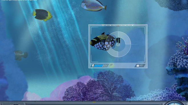 Caribbean Sea Fishes Screenshot 4