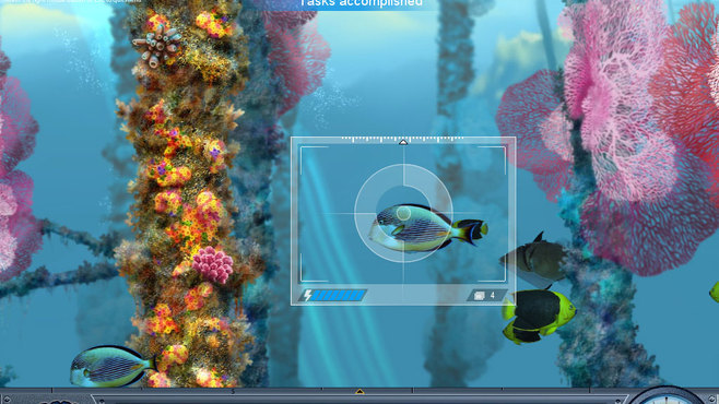 Caribbean Sea Fishes Screenshot 7