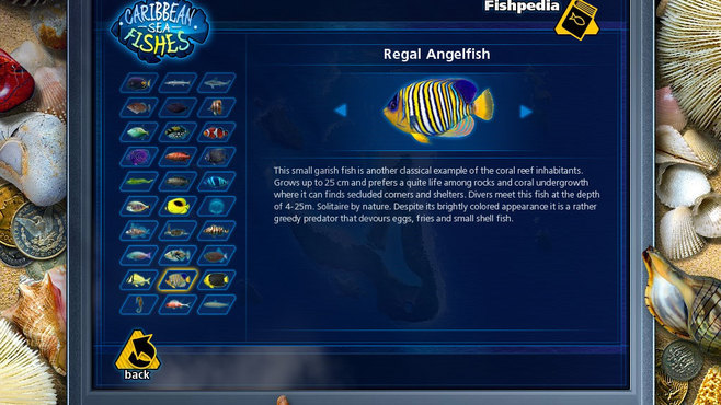 Caribbean Sea Fishes Screenshot 8