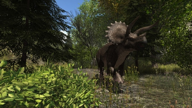 Dinosaur Forest Screenshot 8