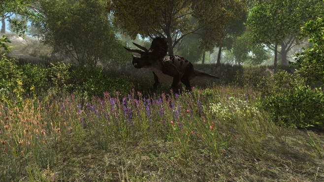 Dinosaur Forest Screenshot 11