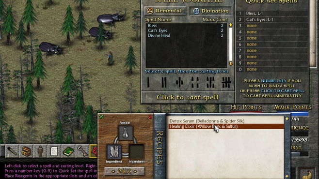 Eschalon: Book II Screenshot 3