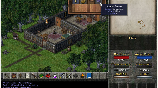 Eschalon: Book II Screenshot 7