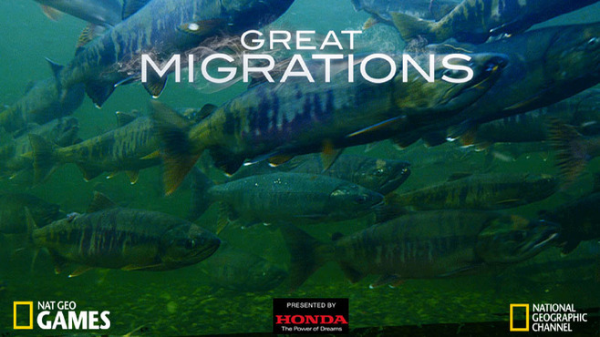 Great Migrations Screenshot 6