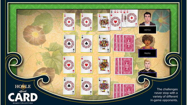Hoyle Official Card Games Screenshot 2