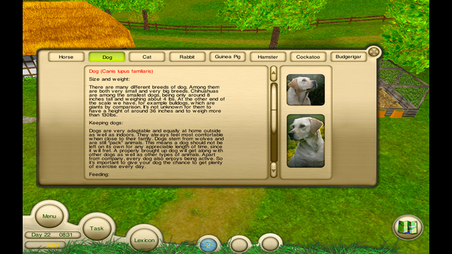 Pet Doc Screenshot 10