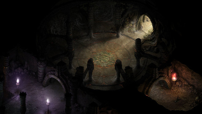 Pillars of Eternity Hero Edition Screenshot 2