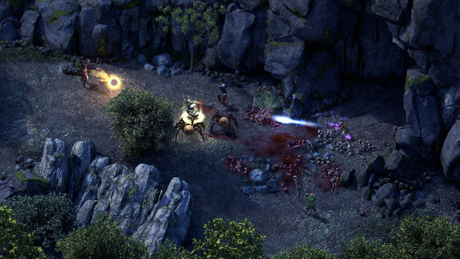 Pillars of Eternity Hero Edition Screenshot 4