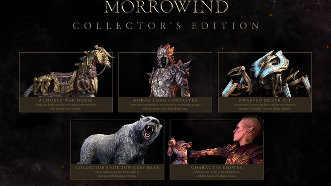 The Elder Scrolls Online - Morrowind - Digital Collector's Edition Upgrade Screenshot 2