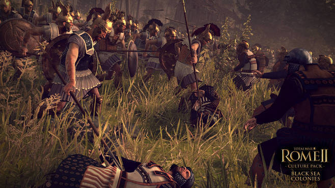 Total War™: ROME II - Black Sea Colonies Culture Pack Screenshot 3